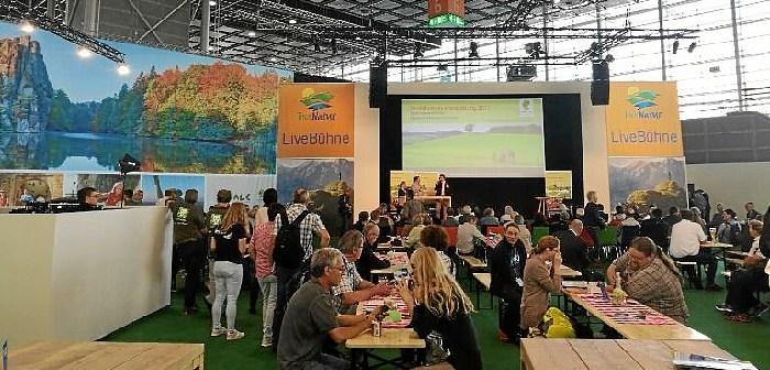 Feria Dusseldorf 2