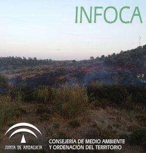 Incendio en Niebla (2)