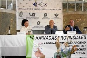 Jornadas provincial de Discapacidad (2)