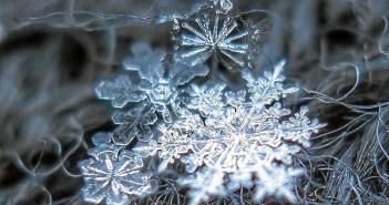 (Foto: Copos de Nieve por Alexey Kljatov)