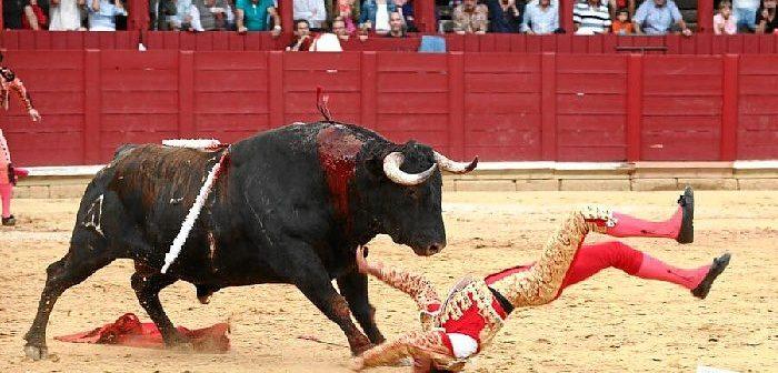 David de Miranda sufrió una cogida de la que por fortuna se ha podido recuperar.