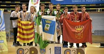 Campeonato de España de Tiro con Arxo en Sala (2)