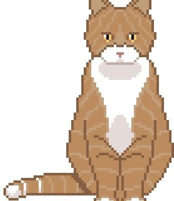 catpattern