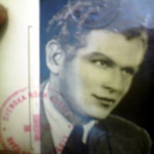 Zoltán Harangi's picture from his Swedish I.D.