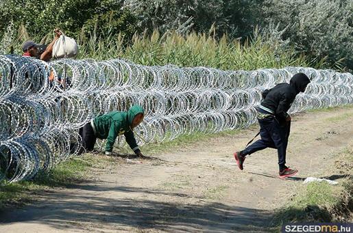Viktor Orbán's useless wall