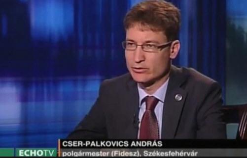 András Cser-Palkovics, mayor of Székesfehérvár