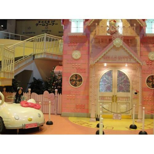 Medium Crop Of Hello Kitty House