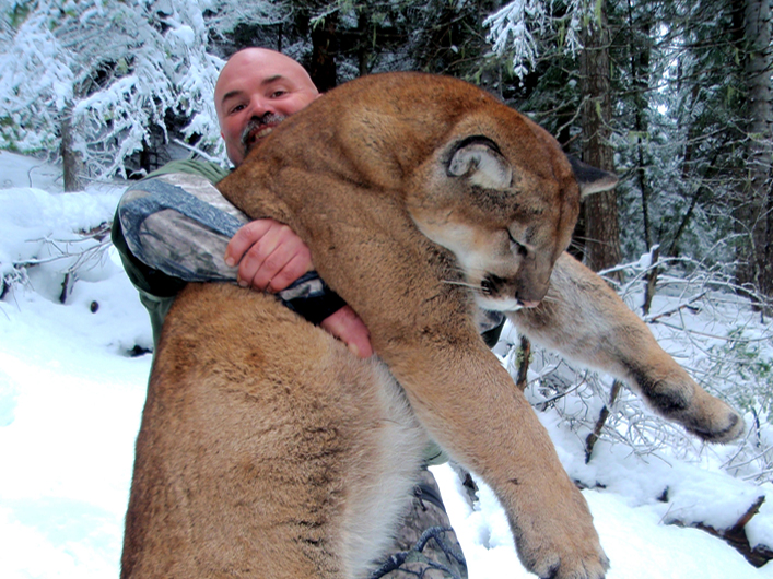 Montana Mountain Lion Hunting with Swan Mountain Outfitters