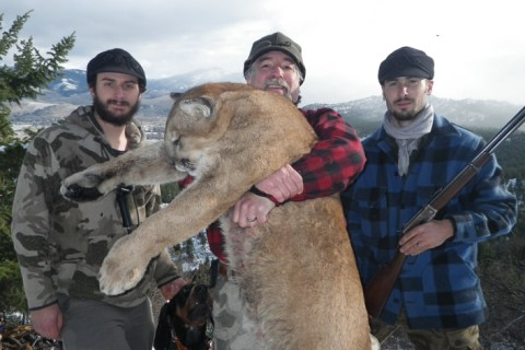 Best Mountain Lion Hunts