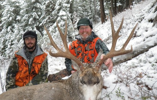 Mule deer best hunt