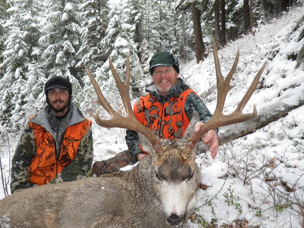 Mule deer best hunt