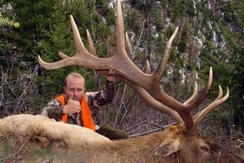 Elk Hunting Trips 2008