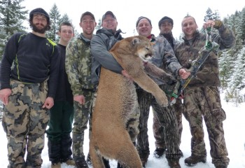 Montana mountain lions hunts