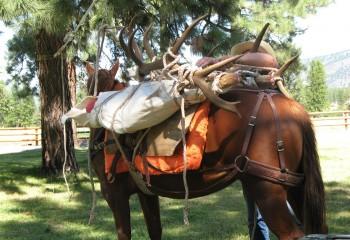Montana hunting camps (2)