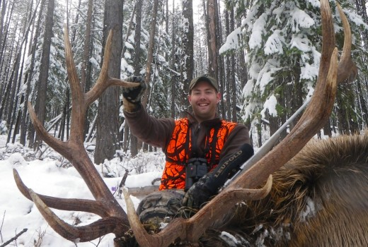 Rifle Elk hunts montana (1)