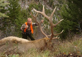 cody bull elk hunt 2008 (2)