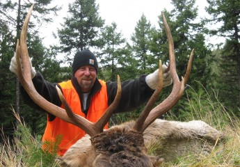 elk hunting outfitter Montana 8 (9)