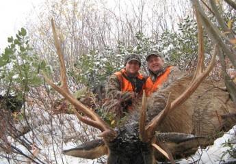 elk hunting trips montana 12 (1)