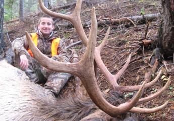 elk hunts montana 2012 (10)