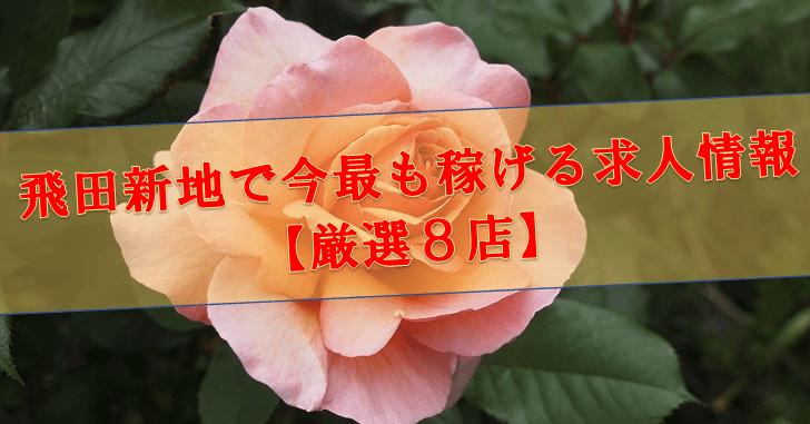 飛田新地で今最も稼げる求人情報【厳選8店】