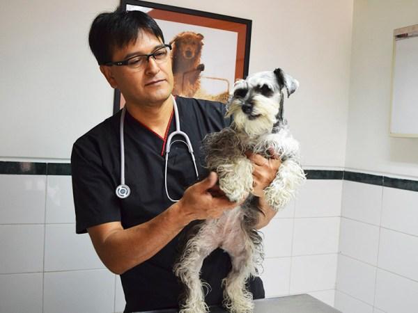 hospitalveterianriolucky-consulta-externa