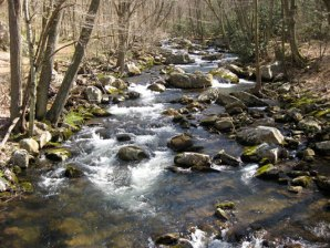 Virginia stream in Giles County.