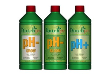 Dutch-Pro-ph-up-and-down