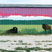 Flea market mural, Buffalo Missouri