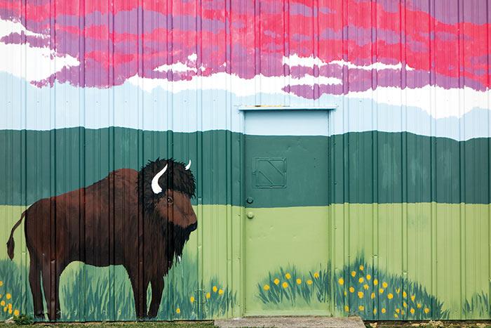 Buffalos of buffalo part 1 hypercommon for Bufflon revetement mural