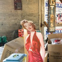 The bold design of roadside signage reflects Madison Avenue's effort to appeal to the male eye. There's little domestic about roadside products. The female cutout figure (is it Marilyn? Let us know if you know) sticks out.