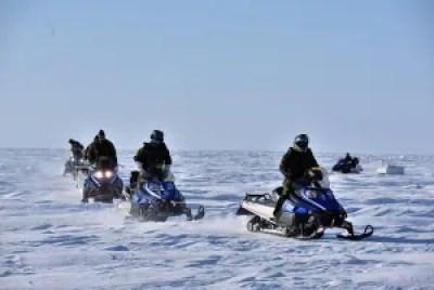 Exercise Arctic Bison 2015