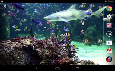 Aquarium live wallpaper Free Android Live Wallpaper download - Appraw