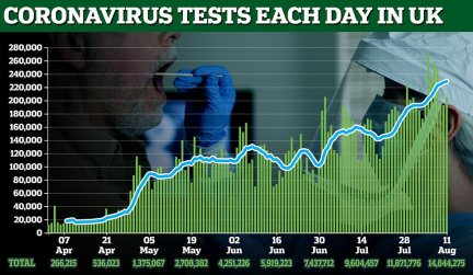 Testing has increased vastly from no more than 13,000 tests per day at the start of April to around 150,000 in July and 200,000 in August
