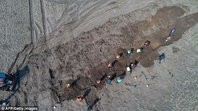 Bluetooth, a Viking-born king turned his back on old Norse religion, but was forced to flee to Pomerania after a rebellion led by his son Sven Gabelbart. This aerial shot, taken by a drone, shows archaeologists searching for more treasure