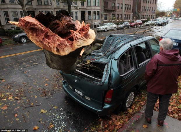 Wrecked: A man looks at an uprooted tree which fell on a car when Superstorm Sandy swept through the Brooklyn borough of New York
