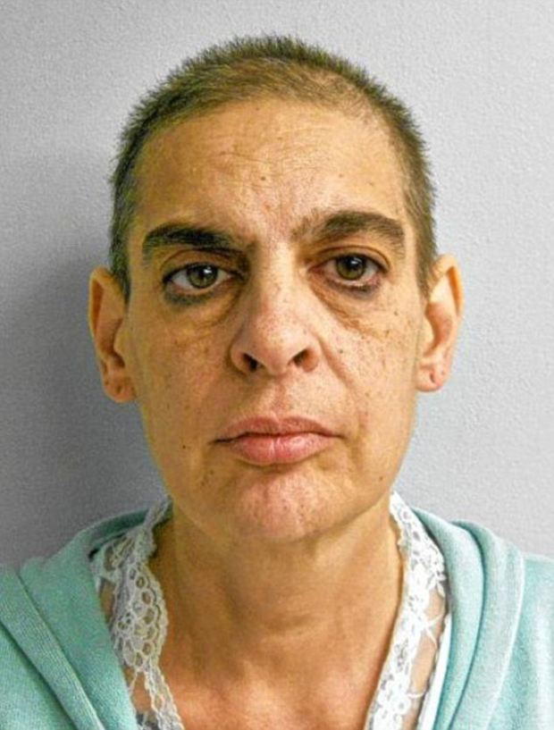Jailed: Christine Gelineau, 53, who pleaded guilty to first-degree assault and witness tampering