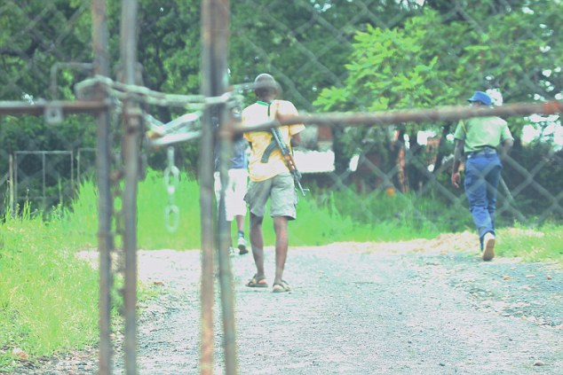 Guarded: A man carrying a gun is pictured at the farm in Zimbabwe, which is padlocked shut and deserted