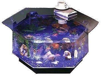 40 Gallon Fish Tank | eBay