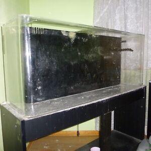 Used 20 gallon aquarium for sale 20 gallon long aquarium for Used fish tanks for sale