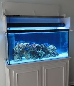 about DIY Aquarium Stand and Canopy PLANS for 75, 90 gallon tanks
