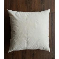 Small Crop Of 16x16 Pillow Insert