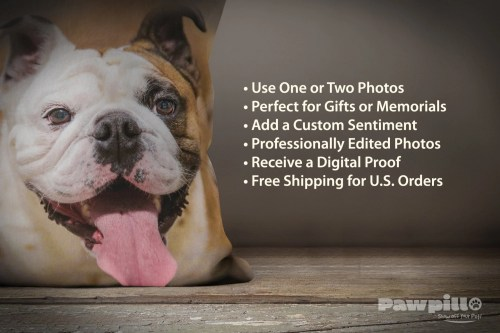 Medium Of Pet Memorial Gifts