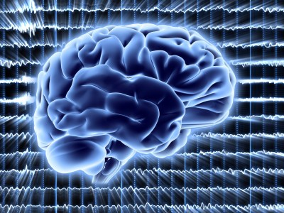 New Brain Activity State Exists In 'Flat Line' Coma Patients, Scans Suggest | HuffPost