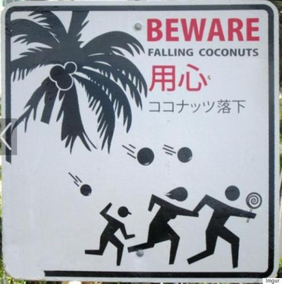 flying coconuts