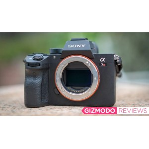 Flossy Sony Iii New King Mirrorless Cameras Slr Direct Company Reviews Slr Direct Customer Reviews