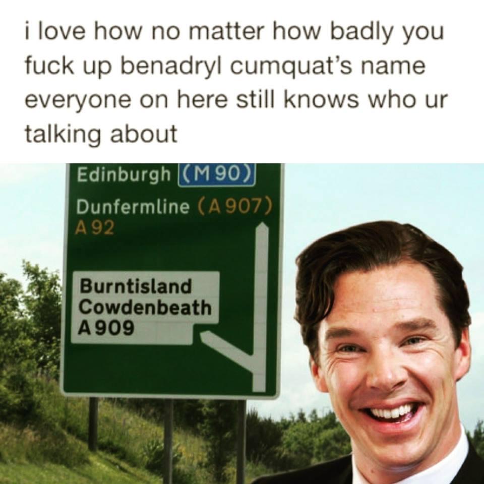 Majestic Bentydick Cummypatch Bentydick Cummypatch Scottishpeopletwitter Benedict Cumberbatch Meme Bear Grylls Benedict Cumberbatch Names Reddit bark post Benedict Cumberbatch Meme