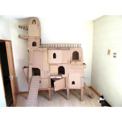 Small Crop Of Cardboard Cat House