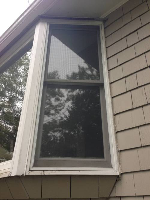 Medium Of Larson Storm Windows