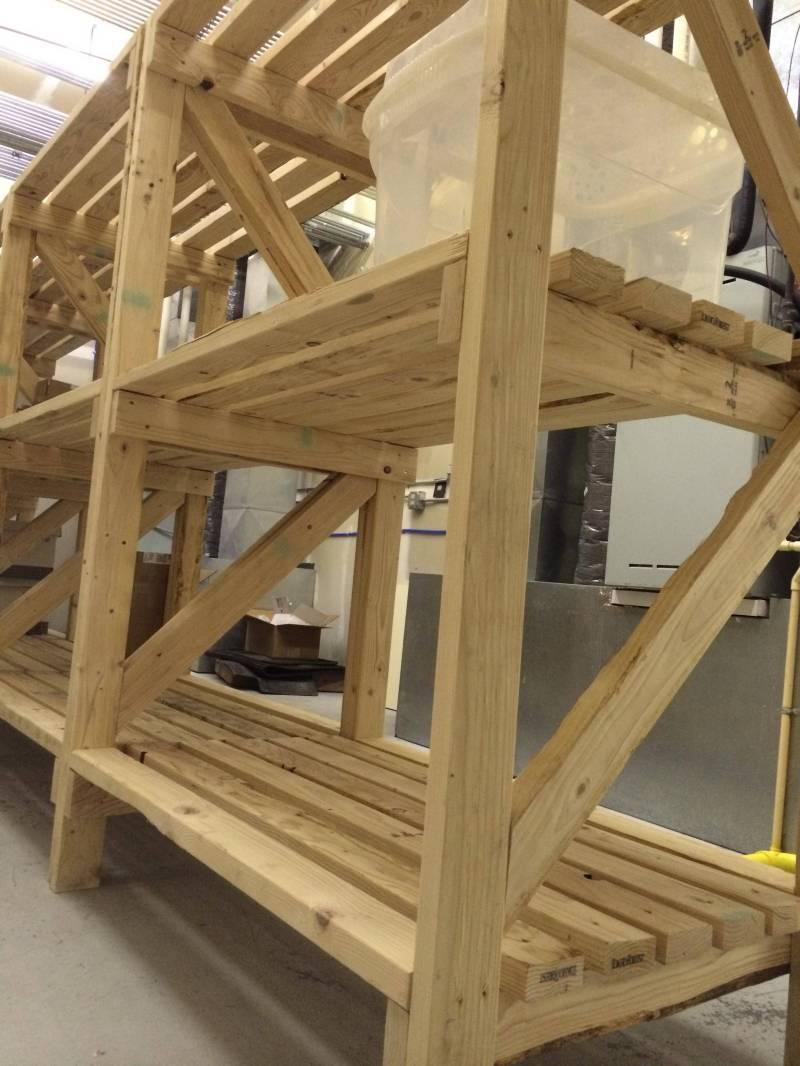 Large Of Basic Wooden Shelves