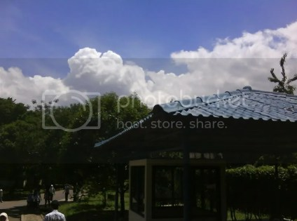cumulus nimbus